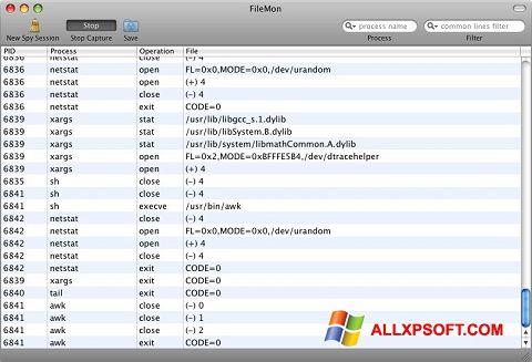 Posnetek zaslona FileMon Windows XP