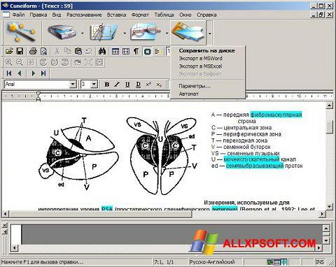 Posnetek zaslona CuneiForm Windows XP
