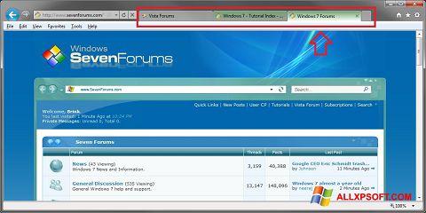 Posnetek zaslona Internet Explorer Windows XP