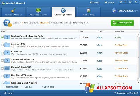 Posnetek zaslona Wise Disk Cleaner Windows XP