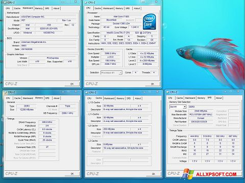 Posnetek zaslona CPU-Z Windows XP
